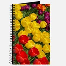Colorful spring tulips in rows Journal