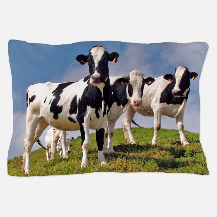 Family portrait Pillow Case