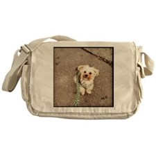 Joey Messenger Bag