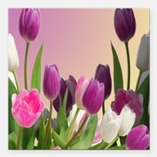 "Purple and White Tulips Square Car Magnet 3"" x 3"""