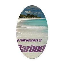 Barbuda Cover Oval Car Magnet