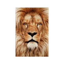 Lion - The King Rectangle Magnet