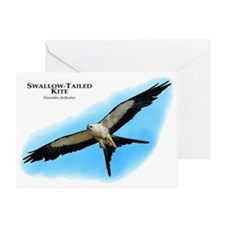 Swallow-Tailed Kite Greeting Card