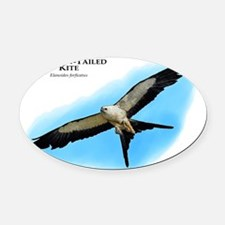 Swallow-Tailed Kite Oval Car Magnet