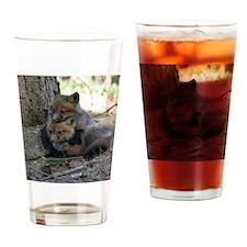 kits head on sib Drinking Glass