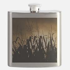 Corn field silhouettes Flask