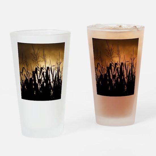 Corn field silhouettes Drinking Glass