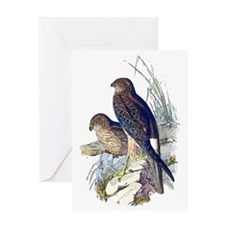 Spotted Harrier Greeting Card