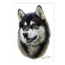 Alaskan Malamute Head Postcards (Package of 8)