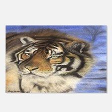 Daddys Tiger Postcards (Package of 8)