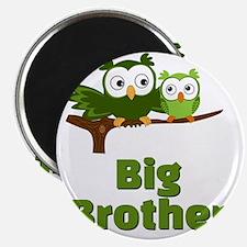 Big Brother Owl Magnet