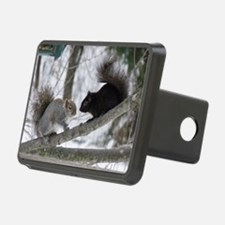 Black and Gray Squirrel Hitch Cover