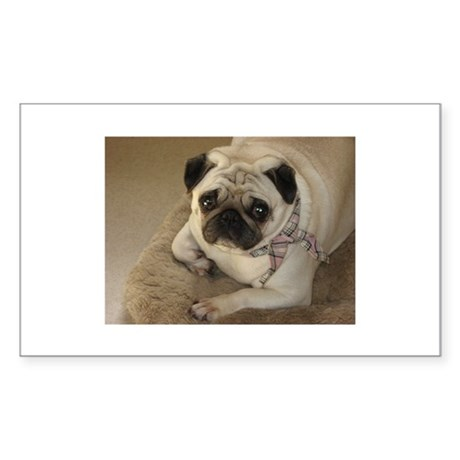 PennyPug Rectangle Sticker