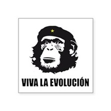 "Viva La Evolucion Design Square Sticker 3"" x 3"""