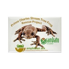 Prince Charles Stream Tree Frog R Rectangle Magnet