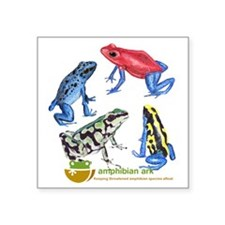 """Poison Frogs Square Sticker 3"""" x 3"""""""