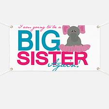 Big Sister Again Banner