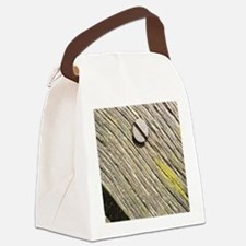 Nailed Down Driftwood Canvas Lunch Bag
