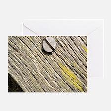 Nailed Down Driftwood Greeting Card