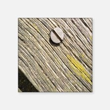 """Nailed Down Driftwood Square Sticker 3"""" x 3"""""""