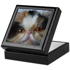 Paintings cats Keepsake Box