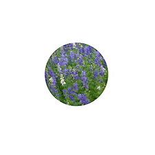 Texas Bluebonnets in Bloom Mini Button
