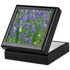 Texas Bluebonnets in Bloom Keepsake Box
