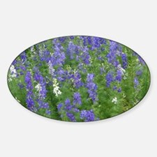 Texas Bluebonnets in Bloom Decal