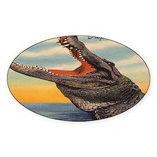 Vintage Alligator Postcard Decal