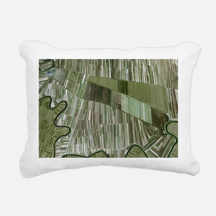 Earth tones Rectangular Canvas Pillow