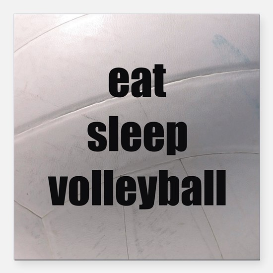 Eat Sleep Volleyball Car Magnets Cafepress