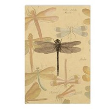 Dragonfly Vintage Postcards (Package of 8)