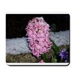 Snow Hyacinth Mousepad