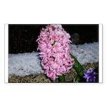 Snow Hyacinth Rectangle Sticker