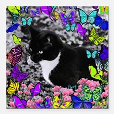 "Freckles the Tux Cat in  Square Car Magnet 3"" x 3"""