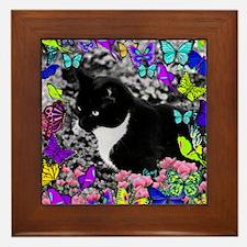 Freckles the Tux Cat in Butterflies II Framed Tile