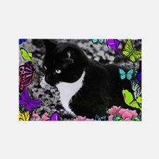 Freckles the Tux Cat in Butterfli Rectangle Magnet