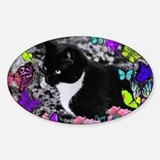 Freckles the Tux Cat in Butterflies Decal