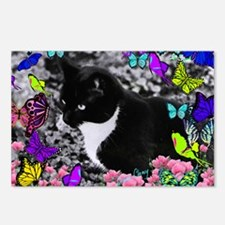 Freckles the Tux Cat in B Postcards (Package of 8)