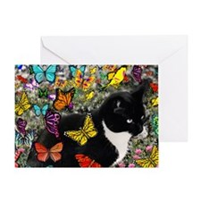 Freckles the Tuxedo Kitty in Butterf Greeting Card