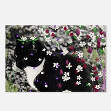Freckles the Tux Kitty in Postcards (Package of 8)