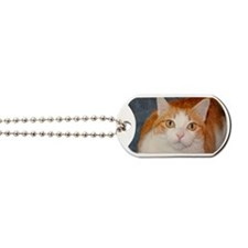 Abner Dog Tags