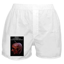 Forbidden Fruit Poster 2 Boxer Shorts