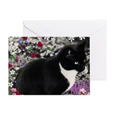 Freckles the Tux Cat in Flowers II Greeting Card