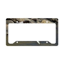 osprey with 2 fish License Plate Holder