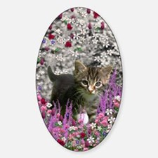 Emma Tabby Kitten in Flowers I Decal