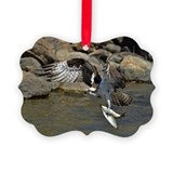 Osprey Picture Frame Ornaments