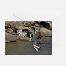 osprey with 2 fish Greeting Card