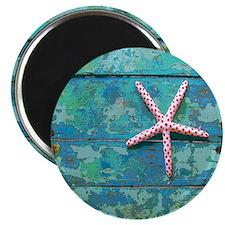 Starfish and Turquoise Seashore Magnet