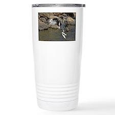 osprey with 2 fish Travel Mug